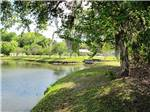 View larger image of Lake view at WHISPER CREEK RV RESORT image #8