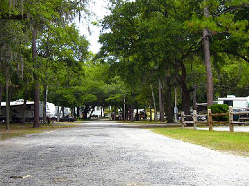 SAVANNAH OAKS RV RESORT at SAVANNAH, GA