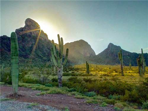 PICACHO PEAK RV RESORT at PICACHO, AZ