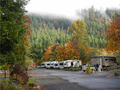 CASEYS RIVERSIDE RV PARK at WESTFIR, OR
