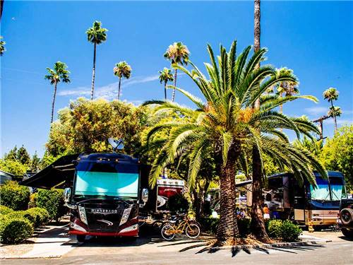 San Diego RV Resort - Sunland