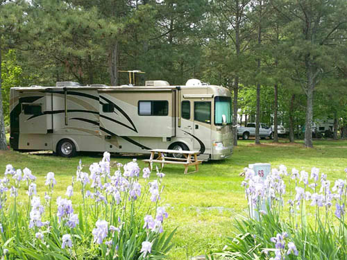PLUM NELLY CAMPGROUND at ELLIJAY, GA