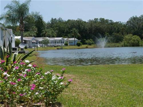 FOREST LAKE ESTATES R.V. RESORT at ZEPHYRHILLS, FL