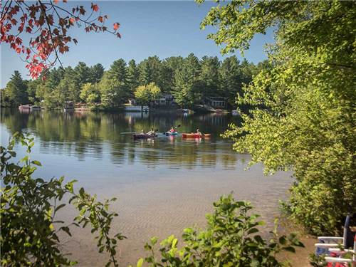 DANFORTH BAY CAMPING & RV RESORT at FREEDOM, NH