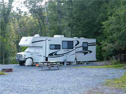 TWIN GROVE RV RESORT & COTTAGES at PINE GROVE, PA