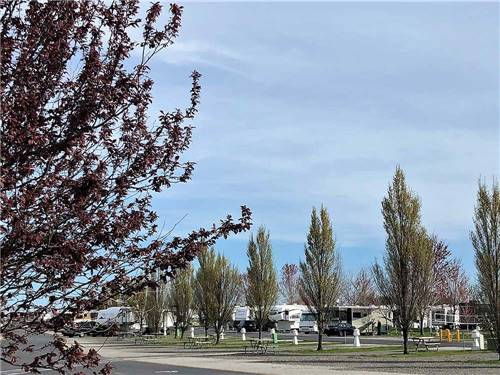 HORN RAPIDS RV RESORT at RICHLAND, WA
