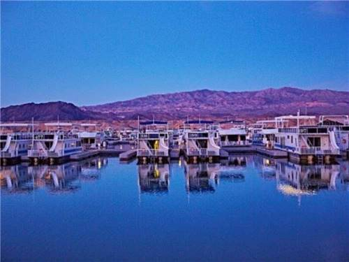 COTTONWOOD COVE RESORT RV PARK & MARINA at SEARCHLIGHT, NV