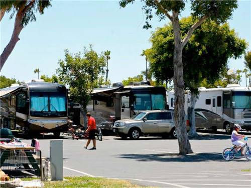 MISSION BAY RV RESORT at SAN DIEGO, CA