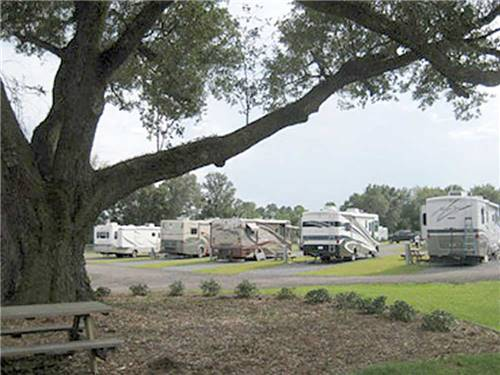 PENSACOLA RV PARK at PENSACOLA, FL