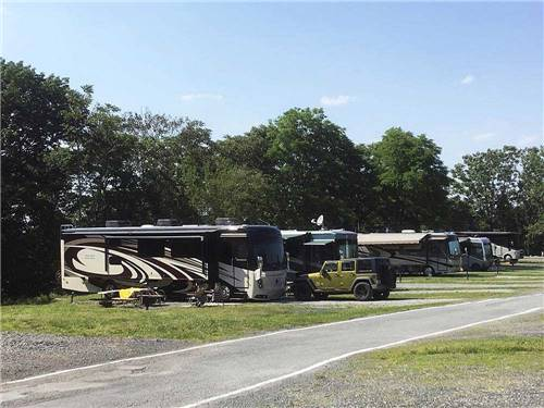 BLACK BEAR CAMPGROUND INC at FLORIDA, NY