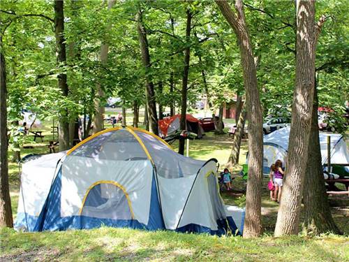 YOGI BEAR'S JELLYSTONE PARK CAMP-RESORT at NIAGARA FALLS, ON