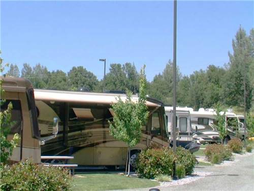 REDDING PREMIER RV RESORT at REDDING, CA