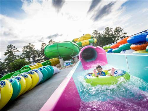 Yogi Bear's Jellystone Park Camp-Resort Luray