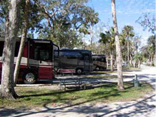 NEW SMYRNA BEACH RV PARK at NEW SMYRNA BEACH, FL
