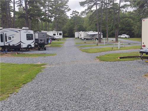 ZOOLAND FAMILY CAMPGROUND at ASHEBORO, NC