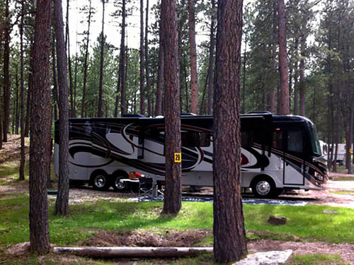 Big pine campground custer campgrounds good sam club for Cabins near custer sd