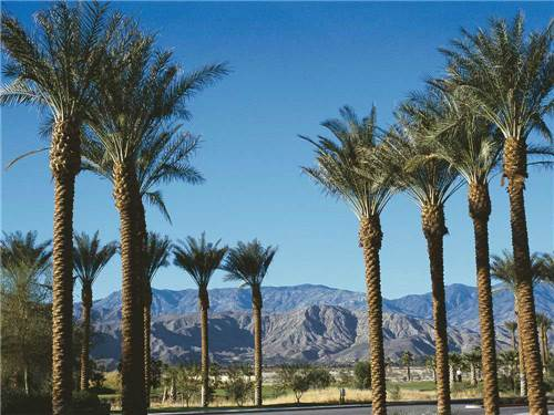 INDIAN WELLS RV RESORTS at INDIO, CA