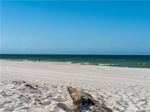 Camper S Inn Panama City Beach Campgrounds Good Sam Club