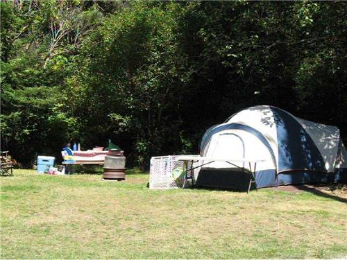 POMO RV PARK & CAMPGROUND at FORT BRAGG, CA