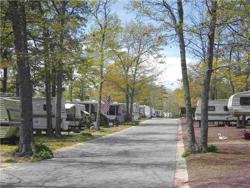 SHADY PINES CAREFREE RV RESORT at GALLOWAY, NJ