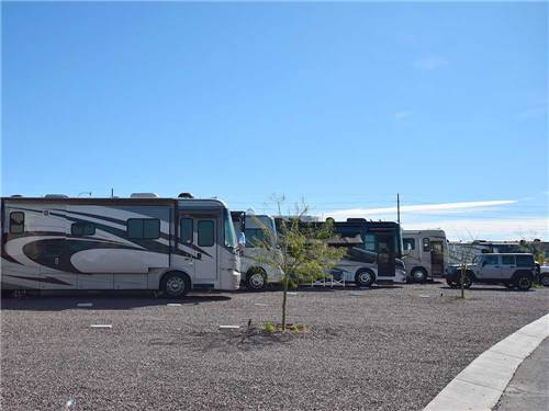 PIONEER RV PARK at PHOENIX, AZ