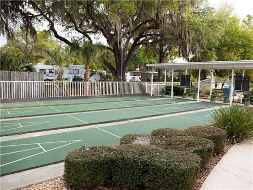 TAMPA EAST RV RESORT at DOVER, FL