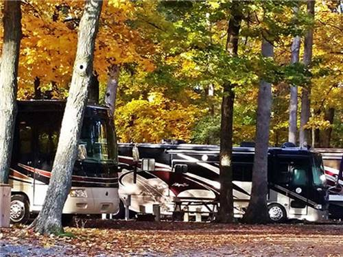 Camp Lakewood Campground & RV Park