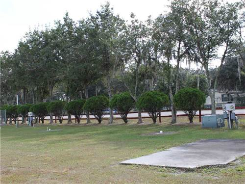 SETTLERS REST RV RESORT at ZEPHYRHILLS, FL