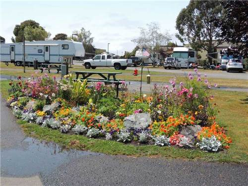 MAD RIVER RAPIDS RV PARK at ARCATA, CA