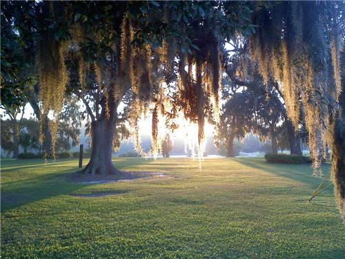 OAK PLANTATION CAMPGROUND, LP at CHARLESTON, SC