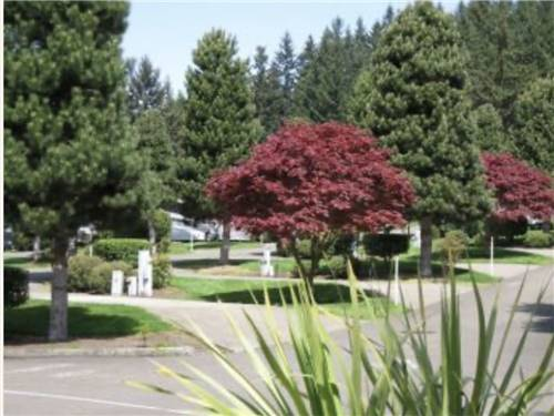 PHEASANT RIDGE RV RESORT at WILSONVILLE, OR