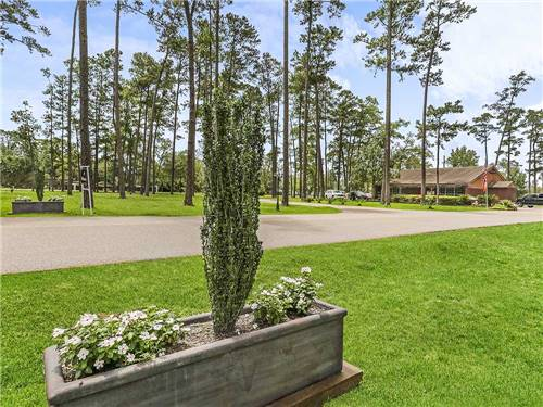 PINE CREST RV PARK OF NEW ORLEANS at SLIDELL, LA