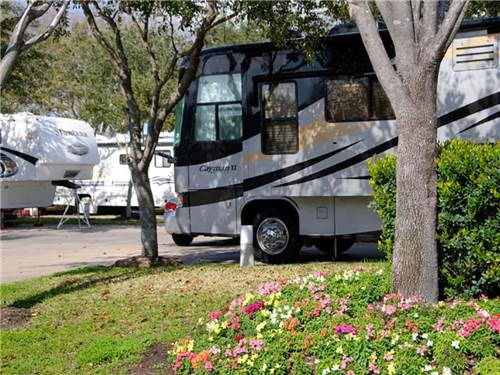 ALL STAR RV RESORT at HOUSTON, TX