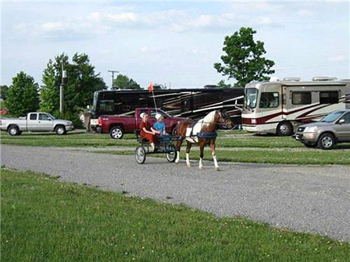 SCENIC HILLS RV PARK at BERLIN, OH
