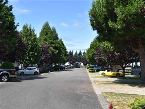 MIDWAY RV PARK at CENTRALIA, WA
