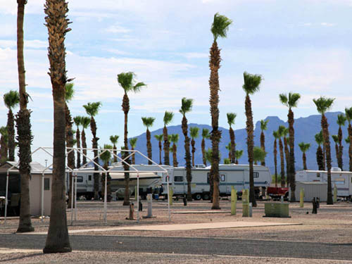 SADDLE MOUNTAIN RV PARK at TONOPAH, AZ