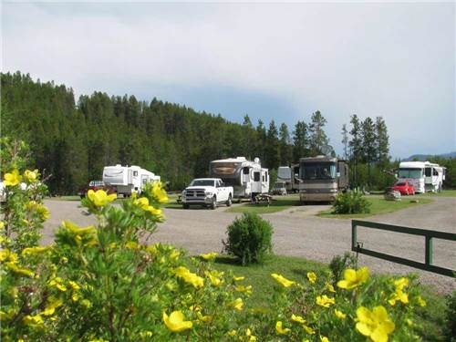 NORTH AMERICAN RV PARK & YURT VILLAGE at WEST GLACIER, MT
