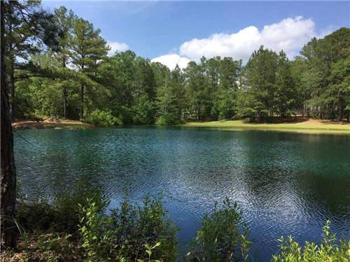 PINE LAKE RV RESORT at ABERDEEN, NC
