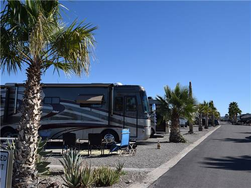 DESERT GOLD RV RESORT at BRENDA, AZ