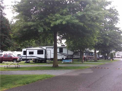 MOUNT VERNON RV PARK at MOUNT VERNON, WA