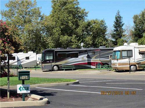 ALMOND TREE RV PARK at CHICO, CA