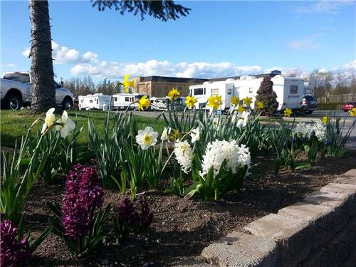 BELLINGHAM RV PARK at BELLINGHAM, WA