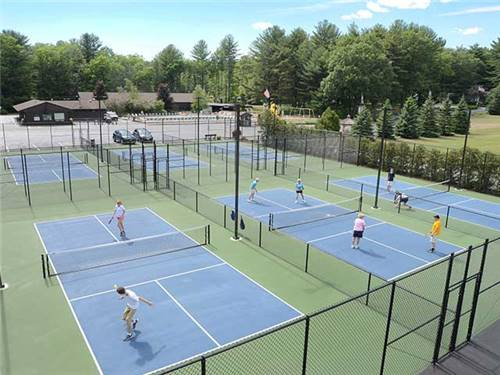 Check out our new pickleball!