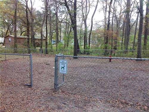 Off-leash dog park.