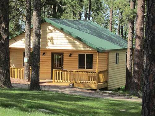 RESERVE a NEW CABIN under tall Pines!