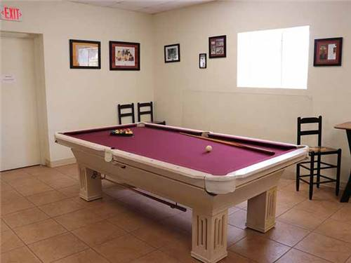 Learn about Arizona's plant life at Saguaro National Park