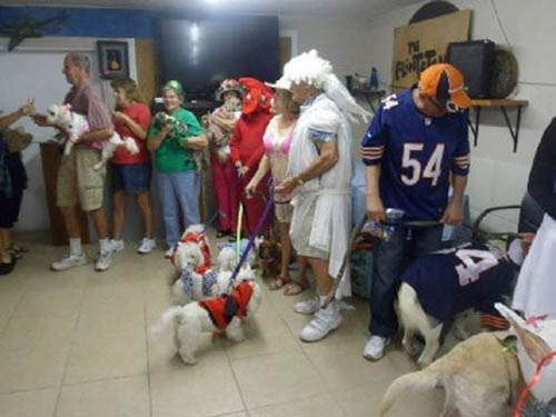 Annual Calendar Dog Parade in the hall