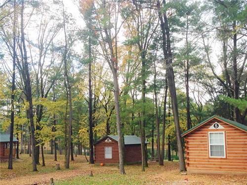 Spacious Camping Cabins