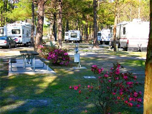 virtual tour of lake city rv resort camping memberships good sam club. Black Bedroom Furniture Sets. Home Design Ideas