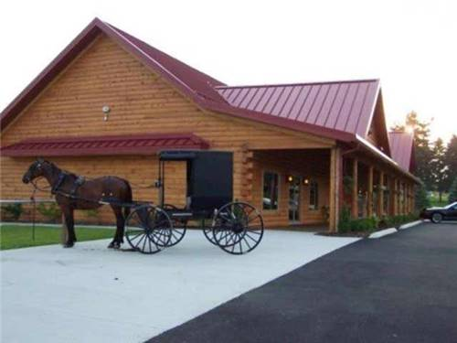 In the heart of Ohio's largest Amish settlement; Evergreen Park RV Resort- a full service RV destination